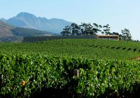 Glenelly-cellar-and-vineyards